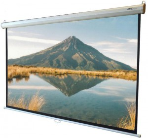 Strident Wall Mounted Projector Screen